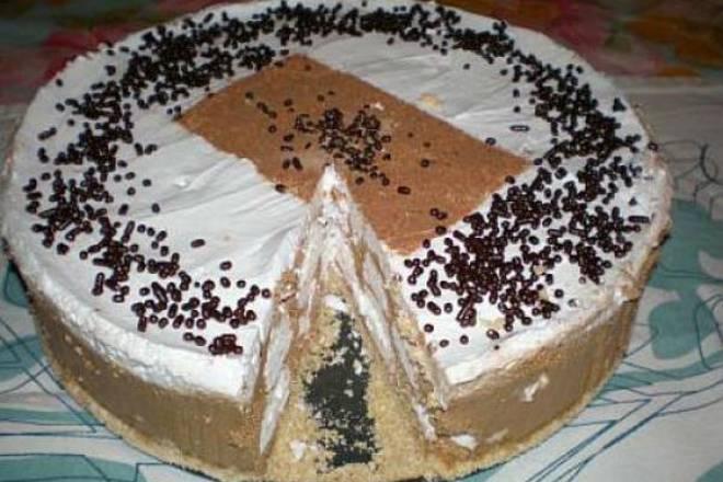 torta-s-puslicama