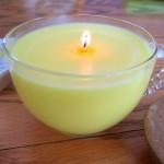 NAPRAVITE SAMI efikasnu svijeću koja tjera komarce i dosadne bubice