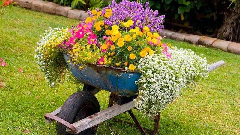 BEZ IKAKVOG TROŠKA: 10 kreativnih ideja za uređenje dvorišta